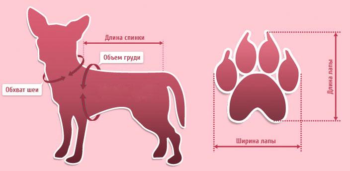 Корм для взрослых собак крупных собак